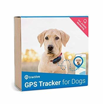 Tractive GPS Tracker Hund - GPS Hund Hundpejl med aktivitetsspårning