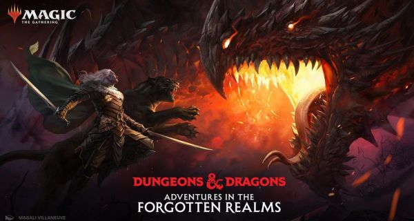 Magic the Gathering: Adventures in the Forgotten Realms Theme Display (12 boosters)